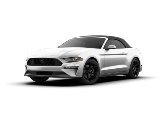 New 2019 Ford Mustang Ecoboost Premium Convertible for Sale in Holbrook AZ